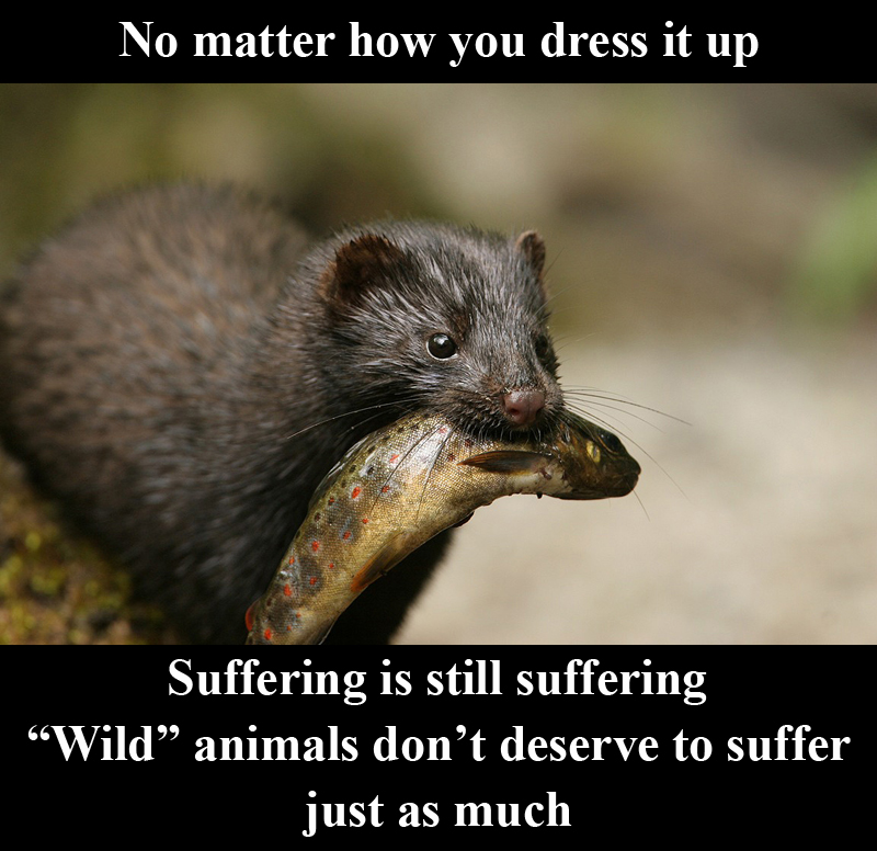 Suffering_is_suffering