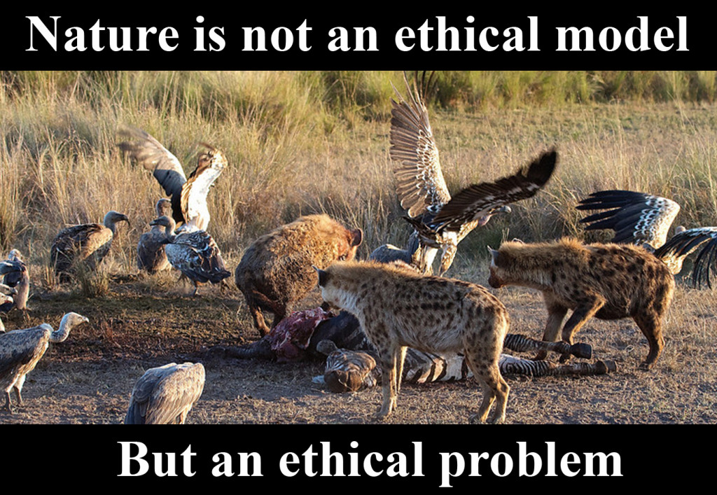 ethical_problem