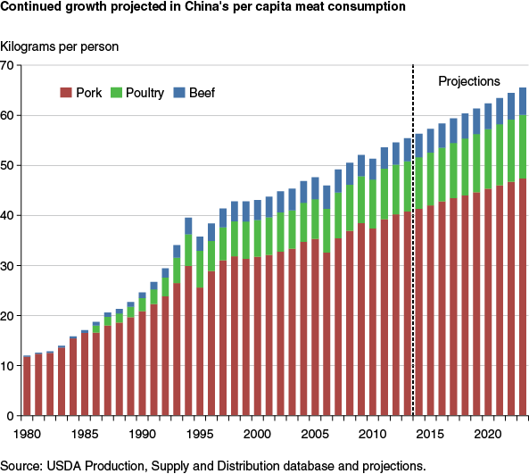 China's per capita meat consumption