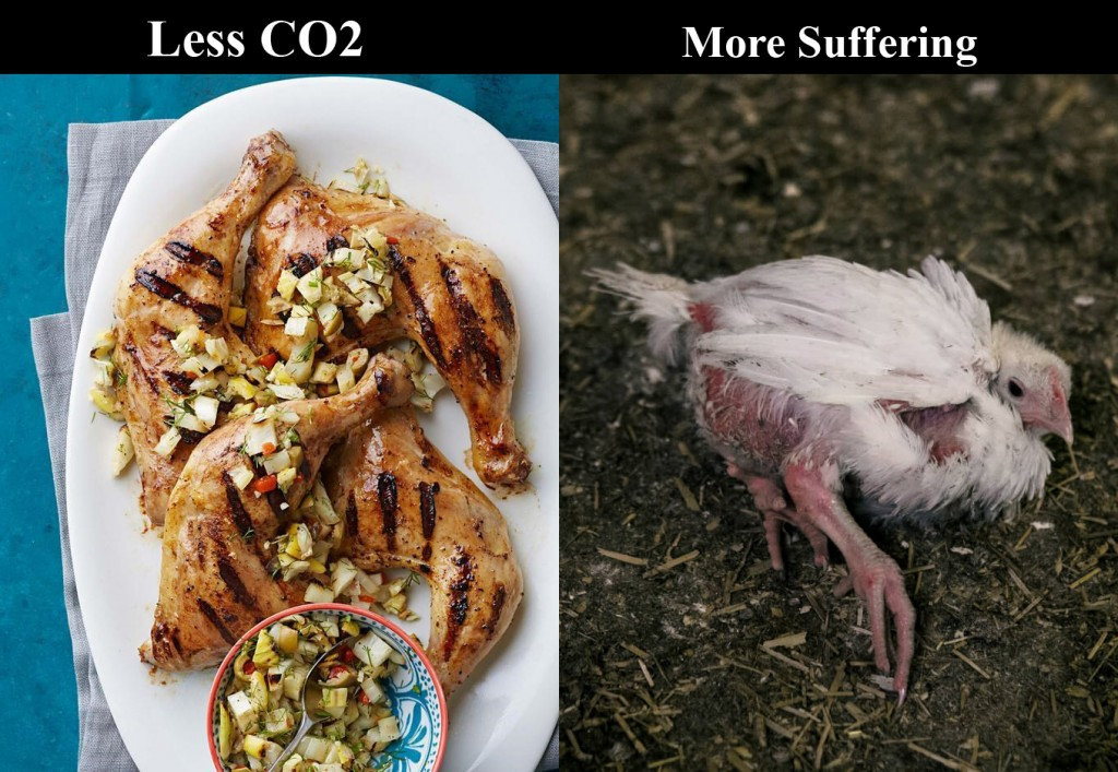 less-co2-more-suffering